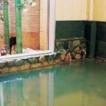 都市部ではめずらしい源泉掛け流しの天然温泉